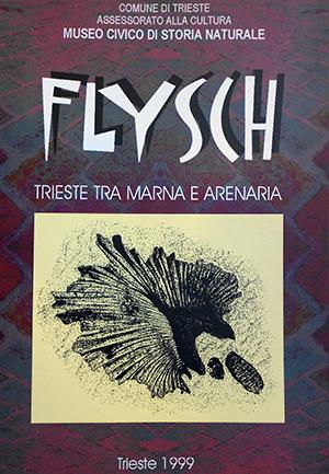 FLYSCH - TRIESTE TRA MARNA E ARENARIA