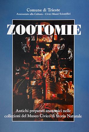 Zootomie